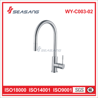 Stainless Steel Pull-out Kitchen Faucet WY-C003-02